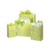 5.5 in.  x 3.25 in.  x 8 in. Green Apple Gingham Checked Small (Rose) Paper Gift Bag