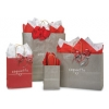 8 in. x 4.75 in. x 10 in. Medium (Cub) Paper Gift Bag in 9 Colors 100% Recycled Mix & Match for VOLUME DISCOUNTS